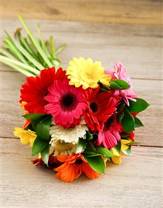 gifts: Mini Gerbera Bouquet!