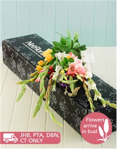 flowers: Mixed Gladiolus in a Gift Box!