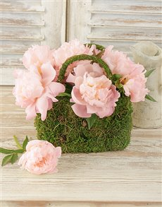 flowers: Light Pink Peonies in Moss Basket!