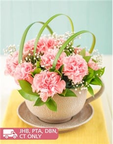 flowers: Pink Carnations in a Teacup!
