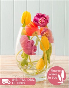 flowers: Egg Shaped Vase of Tulips!