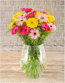 flowers: Mixed Gerberas in a Glass Vase!