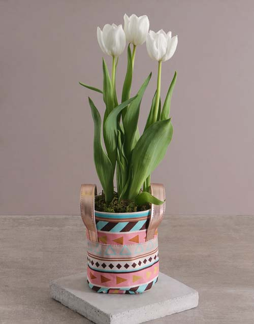 colour: Mothers Day Tulips In Patterned Pot!