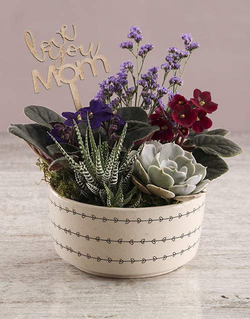 mothers-day: African Violet In Love Hearts Bowl!