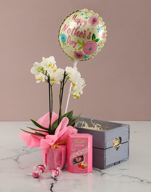 orchids: Love And Orchids Hamper!