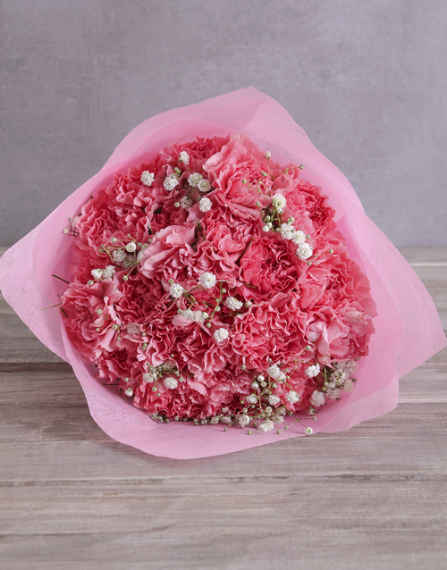 flowers: Blushing Pink Carnations!