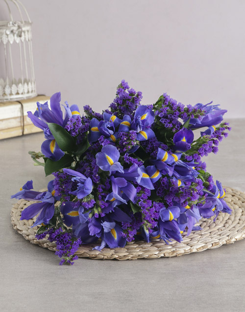 get-well: Dazzling Blue Iris Bouquet!