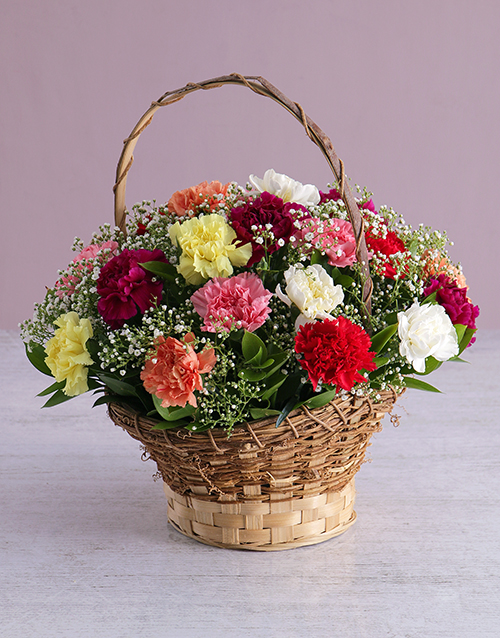 colour: Mixed Carnations in a Basket!