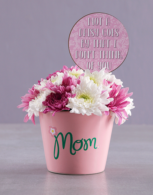 edible-chocolate-arrangements: Pretty Sprays In Ceramic Pot!