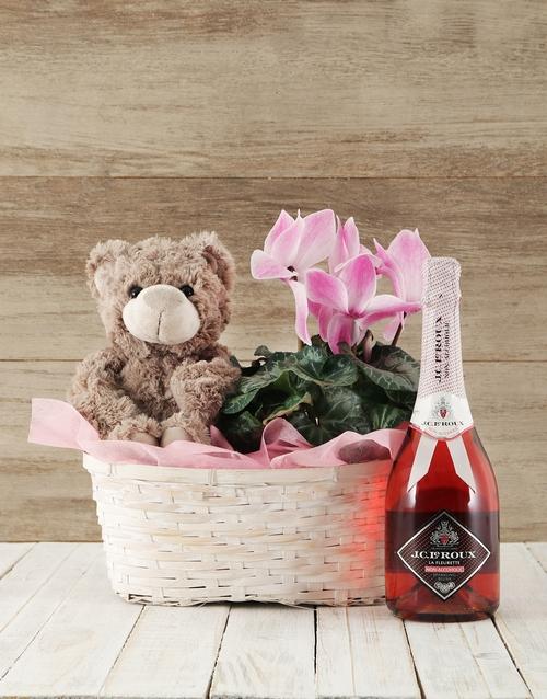 plants: Pink Cyclamen Spoils Basket!