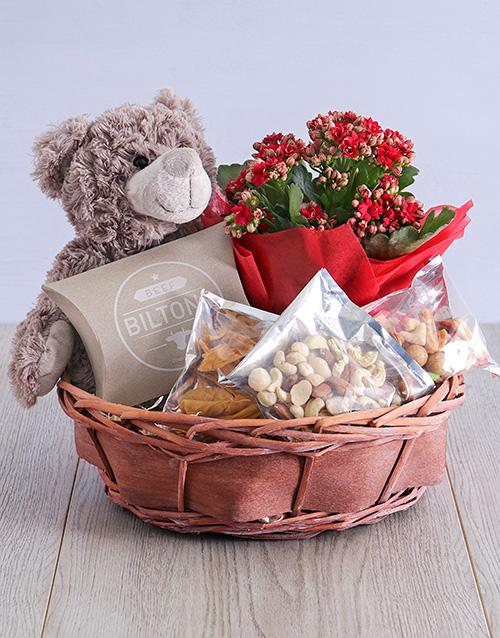 apology: Enchanting Kalanchoe Teddy in Willow Basket!