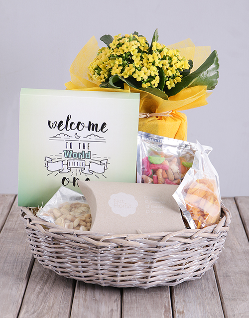 kalanchoe: Welcome Little One Kalanchoe and Snacks Basket!