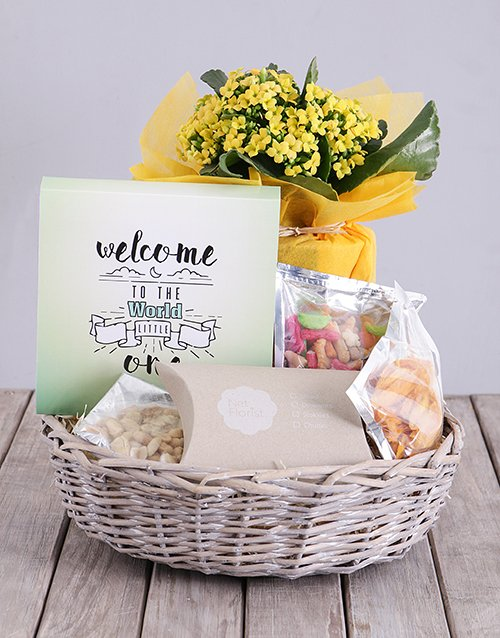baby: Welcome Little One Kalanchoe and Snacks Basket!