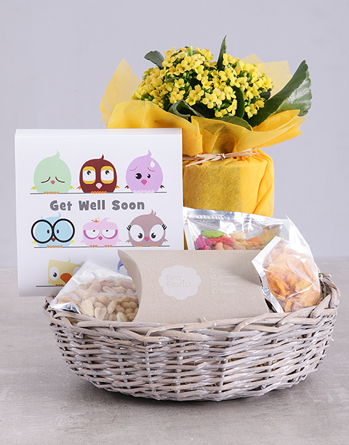 get-well: Get Well Kalanchoe and Snacks Basket!