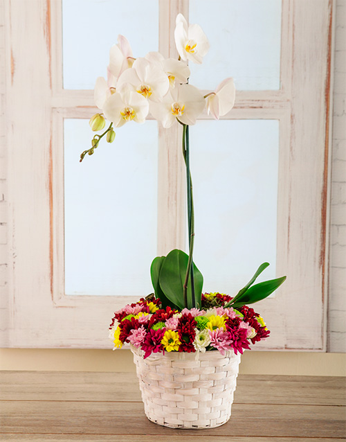 basket: Bright and Beautiful Basket of Love!