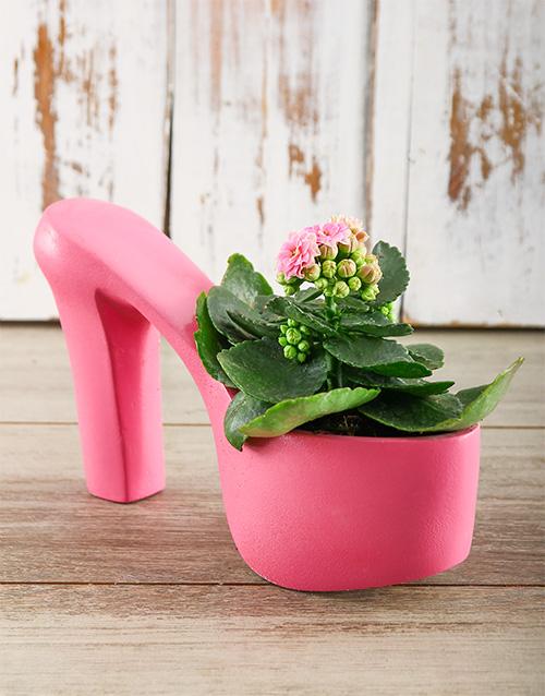 flowers: Fashionable Planter!