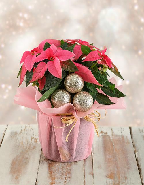 colour: Festive Poinsettia in Pink Paper!