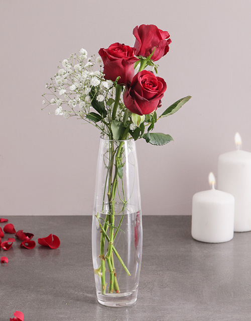 colour: 3 Red Roses in a Vase!