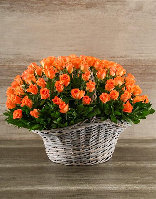 roses: 100 Vibrant Orange Roses in a Basket!
