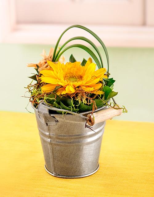 gerbera-daisies: Mini Gerbera in Petite Pail!