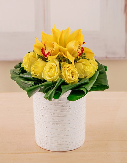 flowers: Bright and Cheerful Roses and Orchid in a Pot!