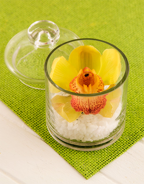 friendship: Single Orchid Blossom in a Candy Jar!