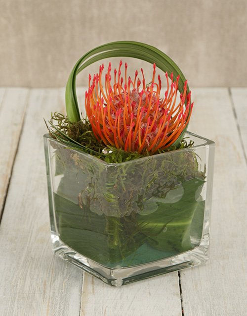 flowers: Single Pincushion in Square Glass Vase!
