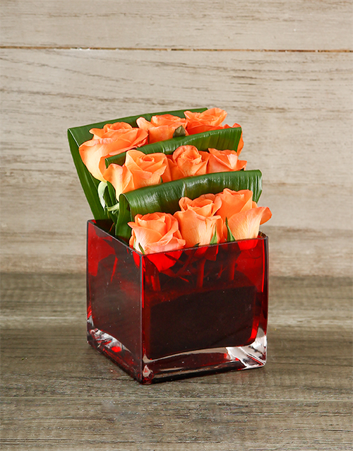 colour: Orange Roses in a Red Square Vase!