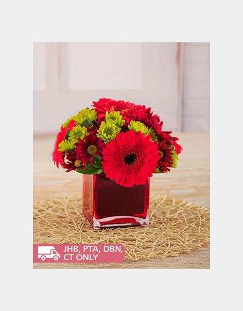 Red Gerberas Sprays In A Red Square Vase Online