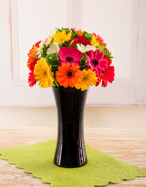 coloured-vases: Mixed Gerberas in a Black Vase!