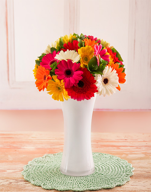 gerbera-daisies: Mixed Mini Gerberas in White Vase!