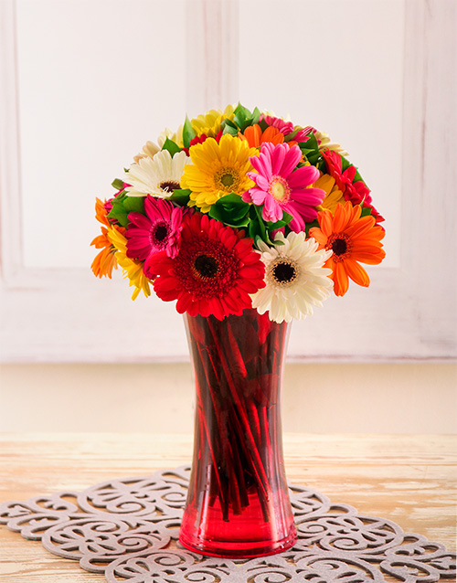 vase: Mixed Gerberas in a Red Vase!