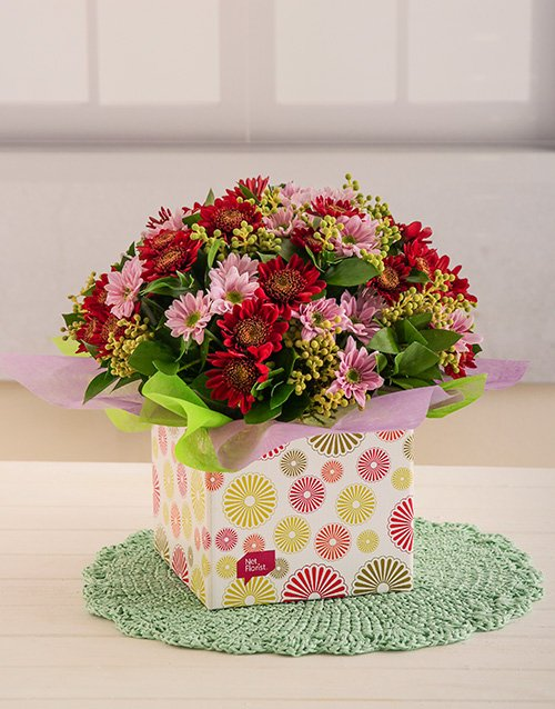 daisies: Mixed Sprays in a Box!
