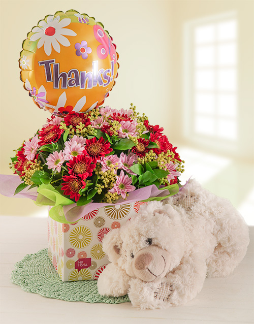 daisies: Thank you Teddy Combo!