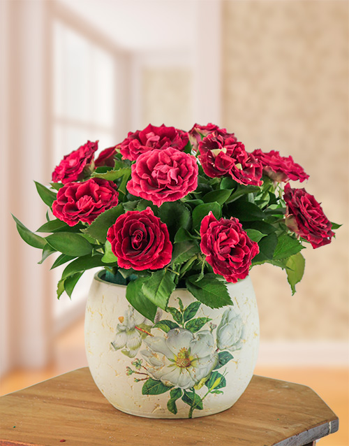 seasonal: Abracadabra Rose Arrangement !