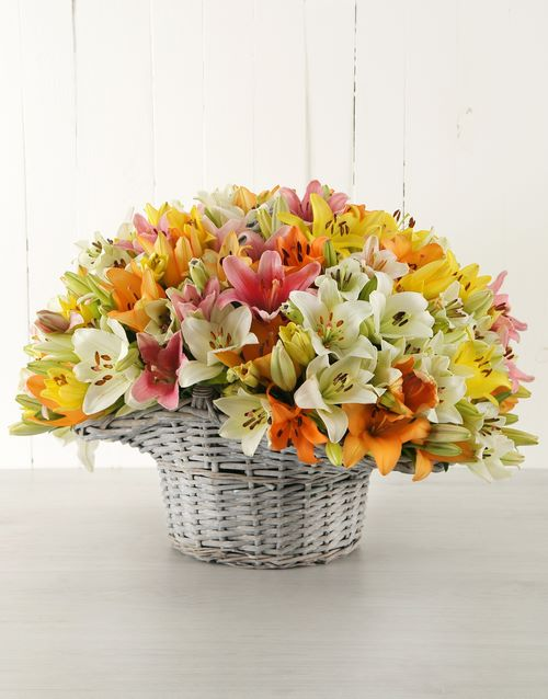 lilies: Mixed Asiflorum Lilies in Willow Basket!