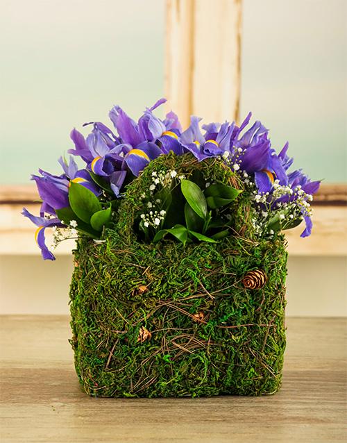 colour: Iris Moss Basket!