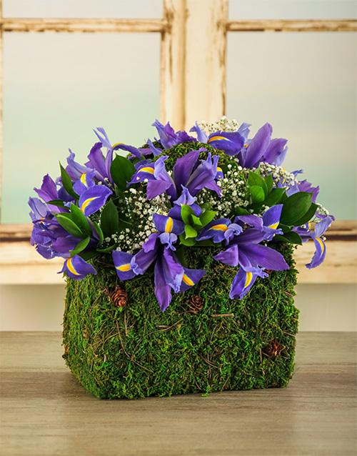 basket: Purple Iris Purse!