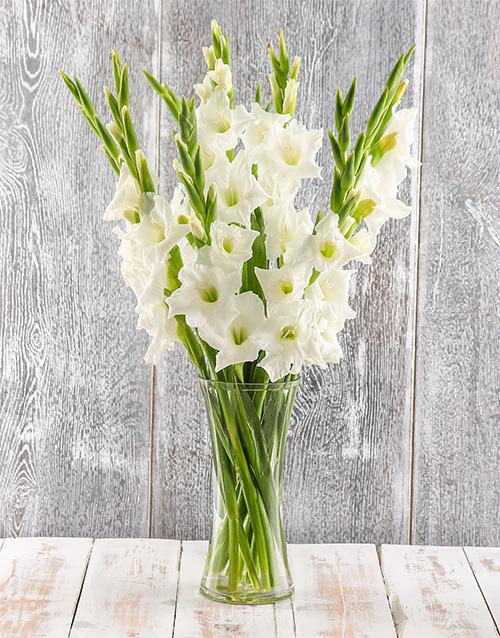 colour: Sweet Serenity Gladiolus Arrangement!