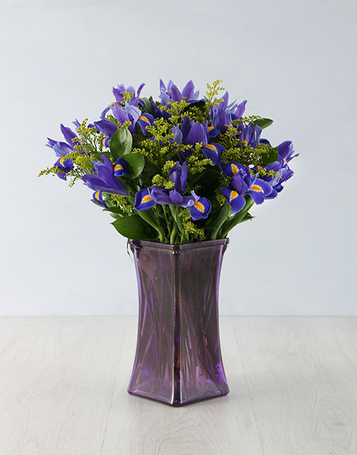 apology: Endearing Iris Arrangement!