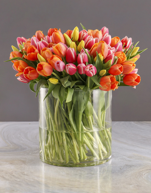 tulips: Hundred in One Tulips Arrangement!