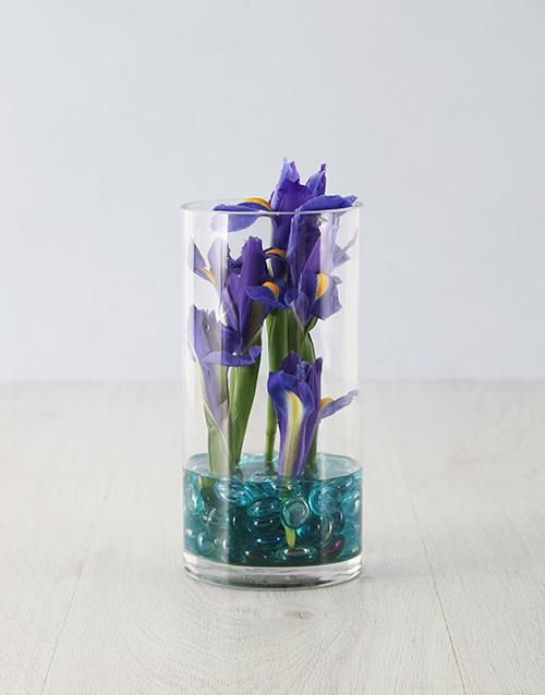 coloured-vases: Mystical Iris in a Vase!
