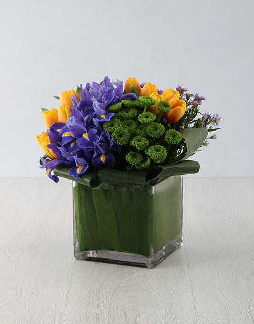 tulips: Extravagant Iris & Tulip Treat!