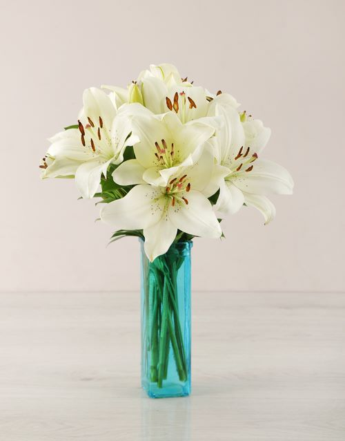 flowers: White Asiflorum Lily Vase!