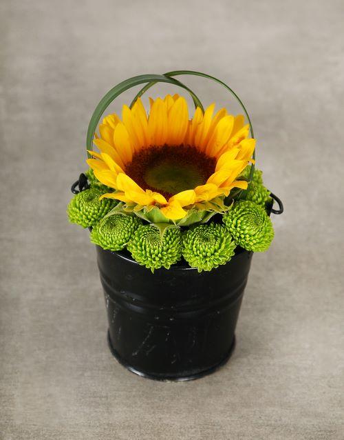 flowers: Green Button Sunflower Pail Bucket!