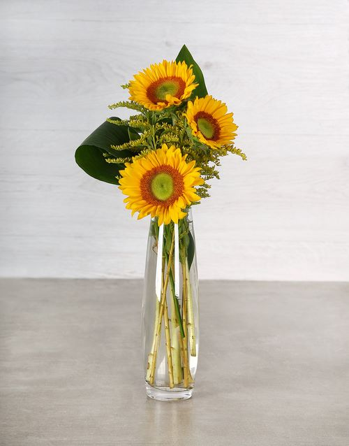 sunflowers: Green Button Sunflowers in Bullet Vase!