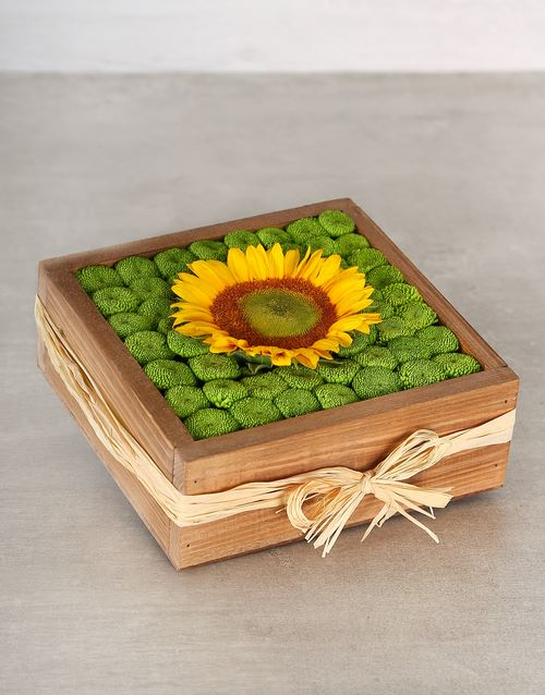 flowers: Green Button Sunflower Crate!