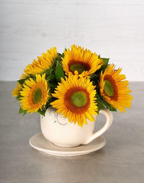 sunflowers: Green Button Sunflower Teacup!