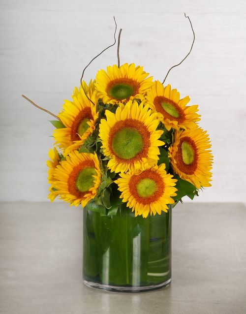 sunflowers: Green Button Sunflower & Willow Vase!