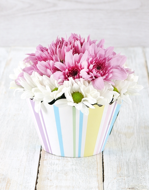 daisies: White and Lilac Spray Cupcake Arrangement!